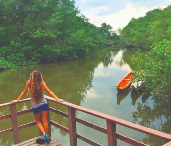 churute mangrove tour
